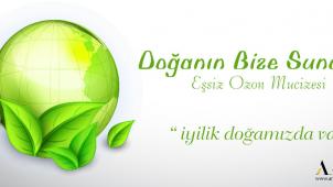 Anatolian Network